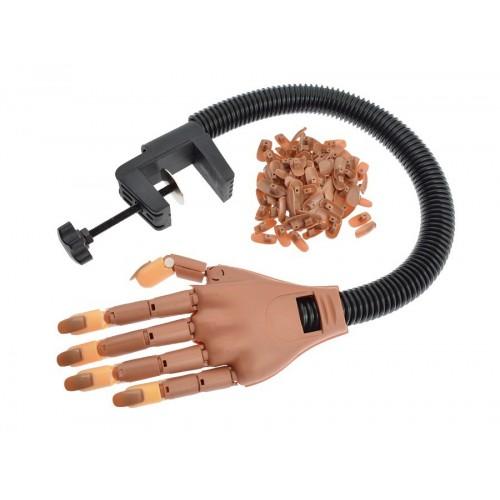 Main d'entraînement pour pose d'ongle