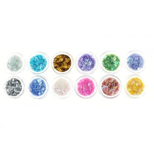 Kit Coquillages en fragments coloré